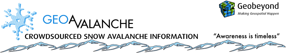 Crowdsourced Snow Avalanche Information